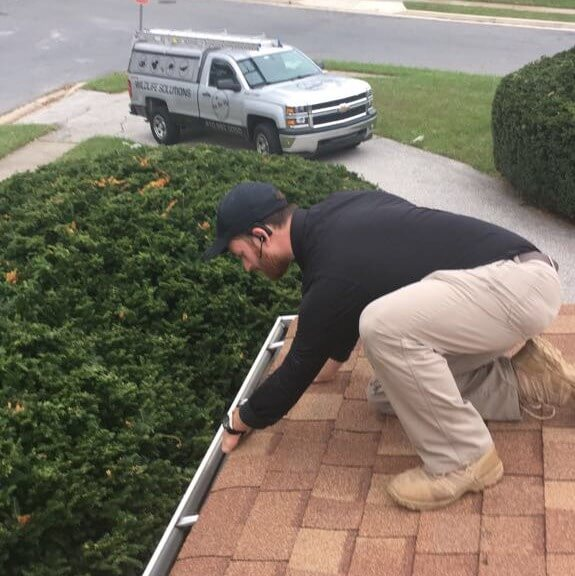 On The Fly Pest Solutions employee on roof shingles checking roof gutter