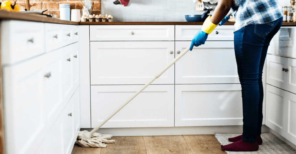 On The Fly Pest Solutions | Keep your kitchen clean