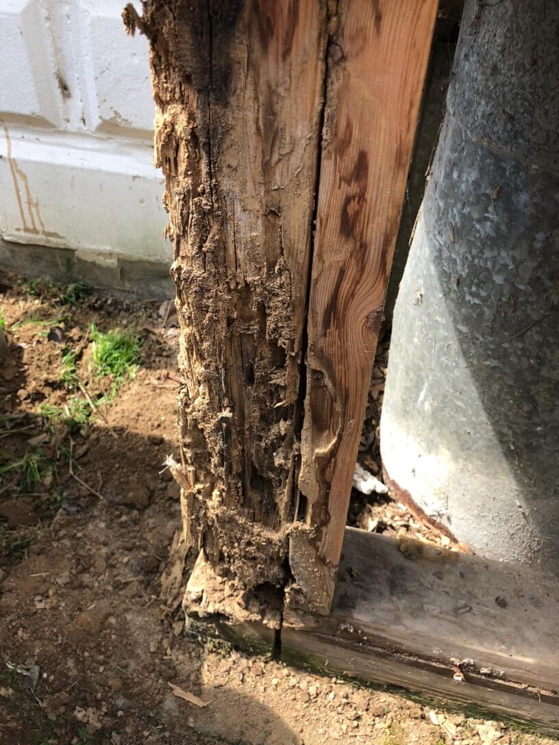 structural damages to a home from termites
